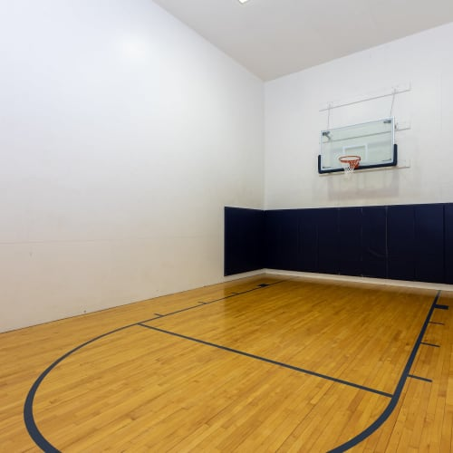 View virtual of the basketball court at The Gallery at Katy in Katy, Texas