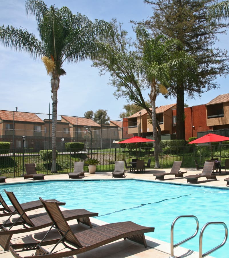 You'll love the community amenities here at Brookhollow Apartments