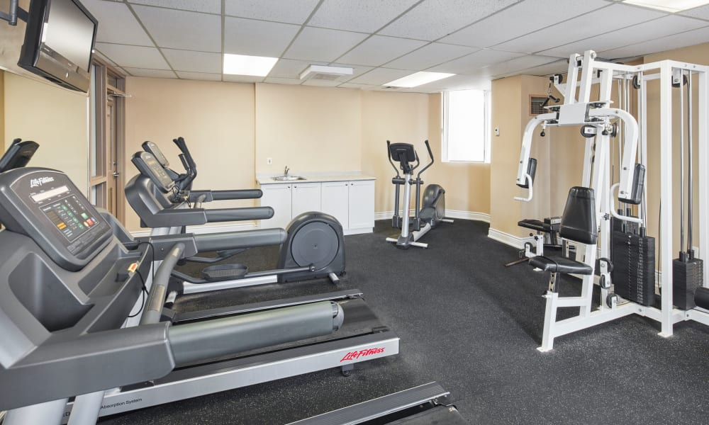 State-of-the-art gym equipment at 8 Silver Maple Court in Brampton, Ontario