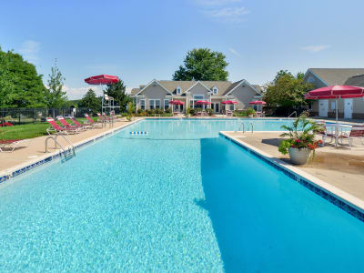 Westerlee Apartment Homes offers a swimming pool in Baltimore, MD