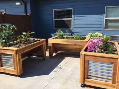 planter boxes full of flowers at Aspen Valley Senior Living in Boise, Idaho