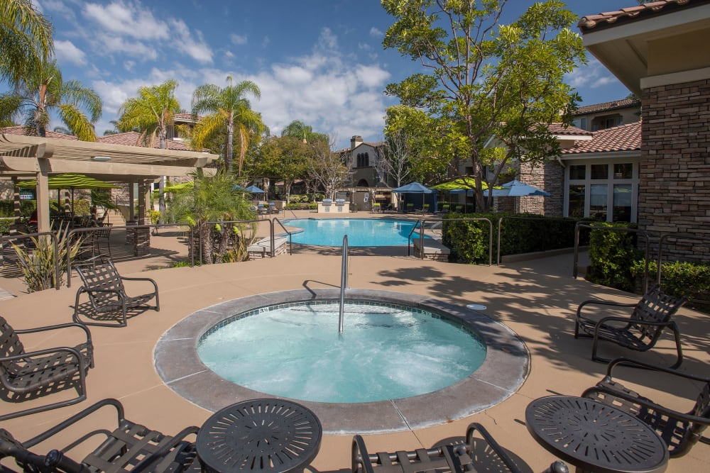 Resort-style swimming pool at Alize at Aliso Viejo Apartment Homes in Aliso Viejo, California