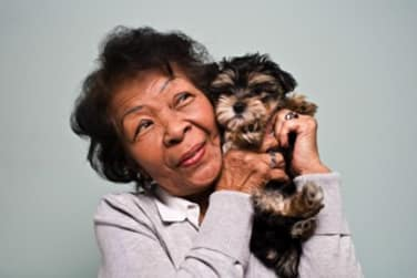 Pet friendly senior living at Grand Villa of Pinellas Park in Pinellas Park, FL
