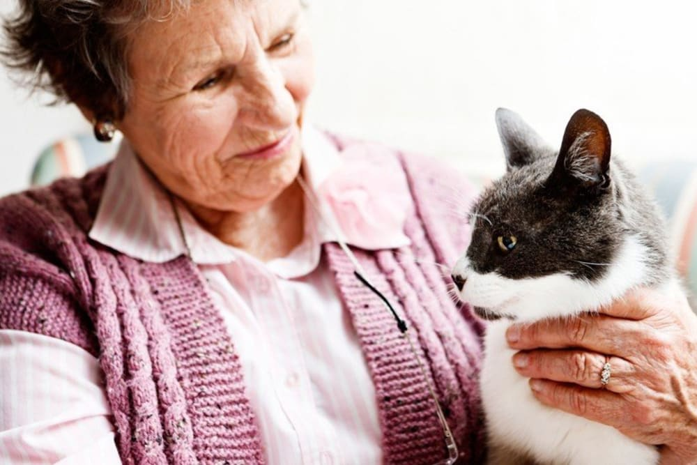 Resident with her pet cat at The Willows Retirement & Assisted Living in Blackfoot, Idaho