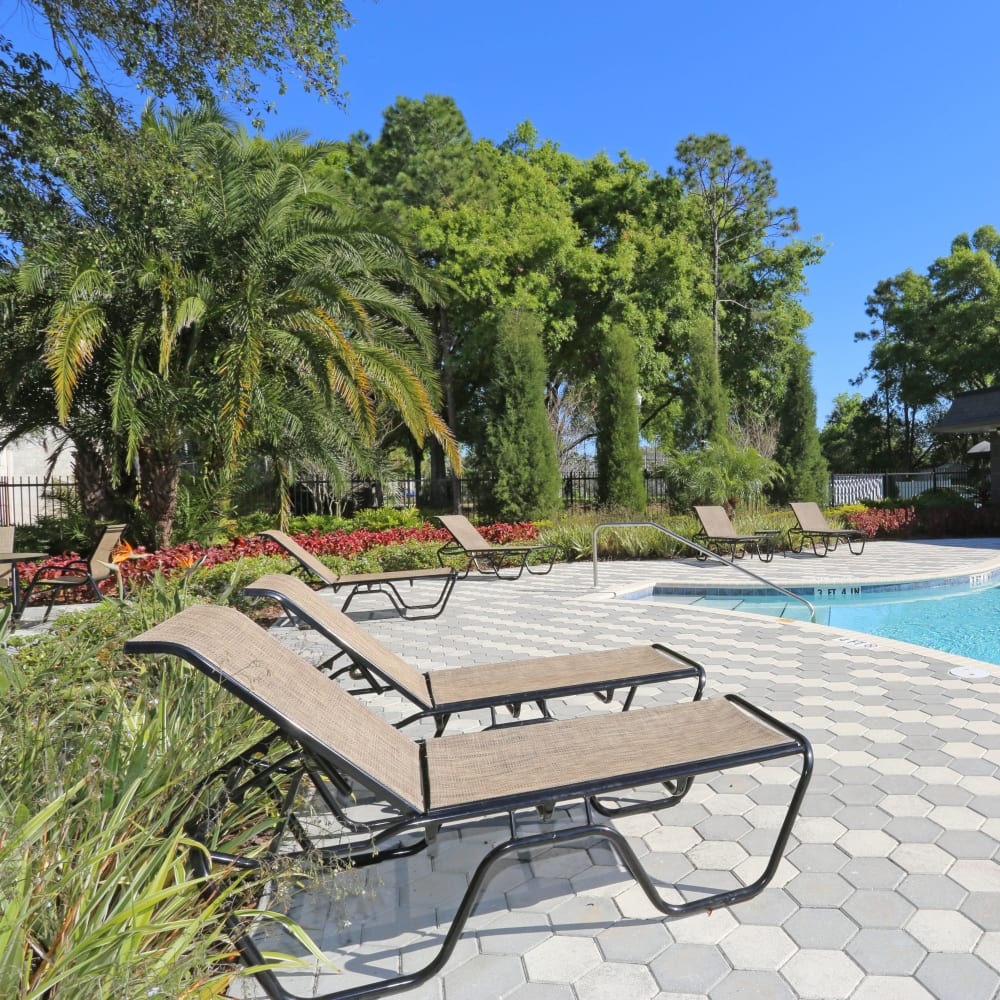 Poolside lounge chairs at Southern Cove Apartments in Temple Terrace, Florida