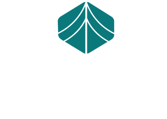 Grove at Temple Terrace