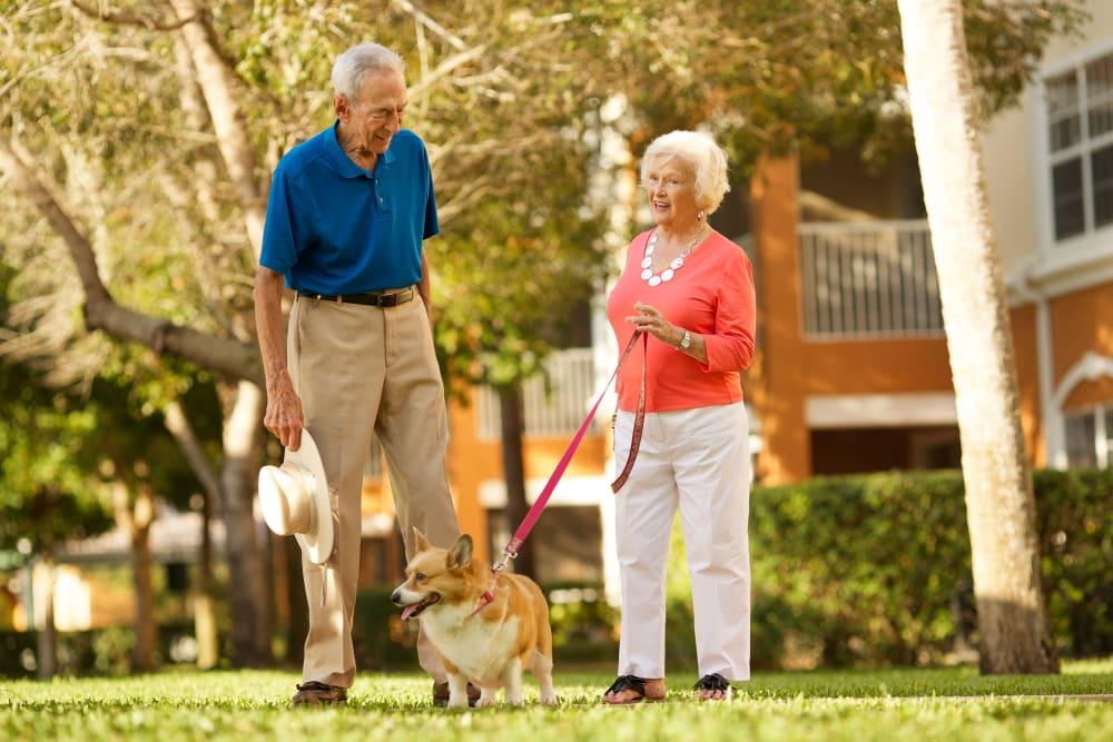 An elderly couple walking their cute corgi in Bonita Springs