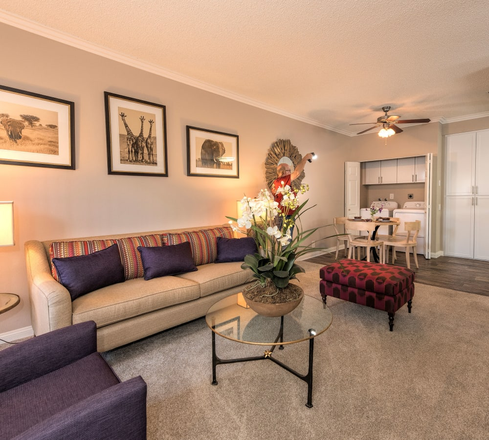 Large living room with plush carpeting at Paloma Summit Condominium Rentals in Foothill Ranch, California