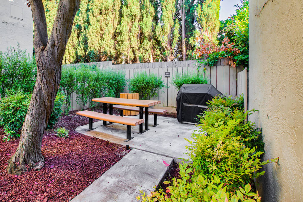 Picnic area surrounded by lush landscaping and mature trees at Pleasanton Place Apartment Homes in Pleasanton, California