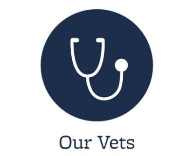 Our animal hospital veterinarians in Clive