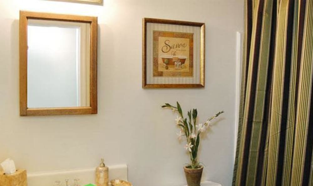 Bathroom with framed mirror in model home at Willow Oaks Apartments in Chesapeake, Virginia