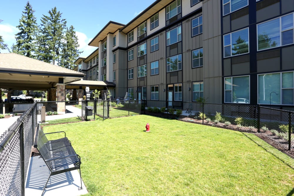 Spacious dog park for residents and their pets at The Lofts at Glenwood Place in Vancouver, Washington