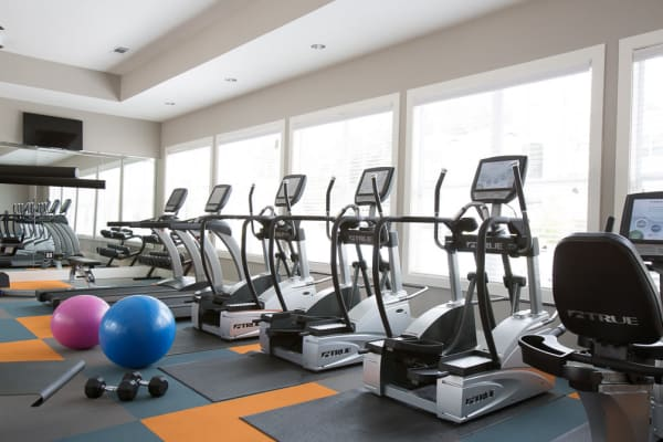 Treadmills and ellipticals at Ansley Commons Apartment Homes in Ladson, South Carolina