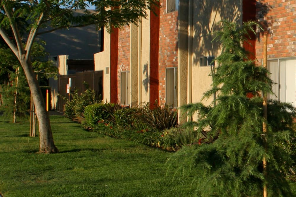 Professionally maintained landscaping throughout the community at Parkwood in Lancaster, California