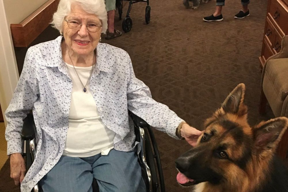 A happy resident petting a visiting therapy dog at Cedar Ridge Health Campus in Cynthiana, Kentucky