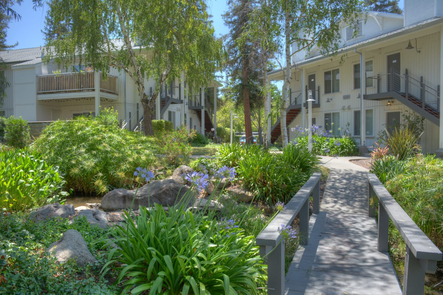 Cotton Wood Apartments in Dublin, California, offer beautiful green surroundings