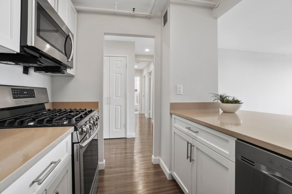 Open kitchen with lots of natural light at Parkside Place in Cambridge, Massachusetts
