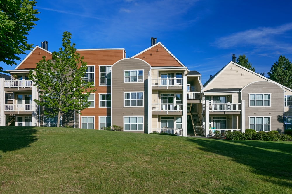 Large grass lawn for summer picnics at Center Pointe Apartment Homes in Beaverton, Oregon
