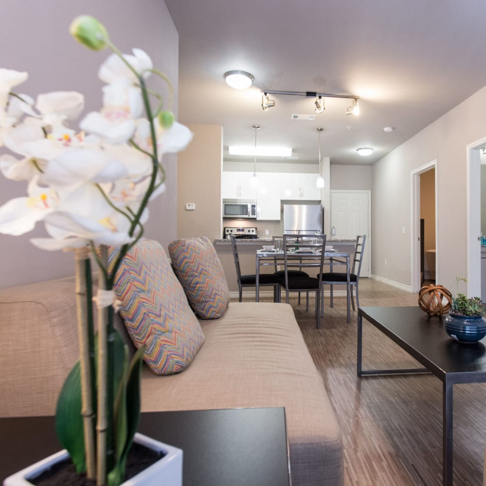 View our floor plans at Texan 26 in Austin, Texas