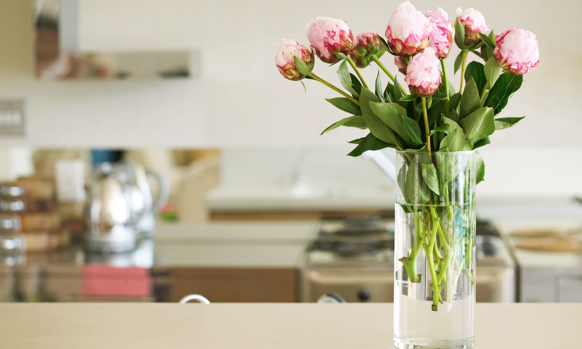 A kitchen with flowers om the counter top at Broadwell Senior Living in Plymouth, Minnesota