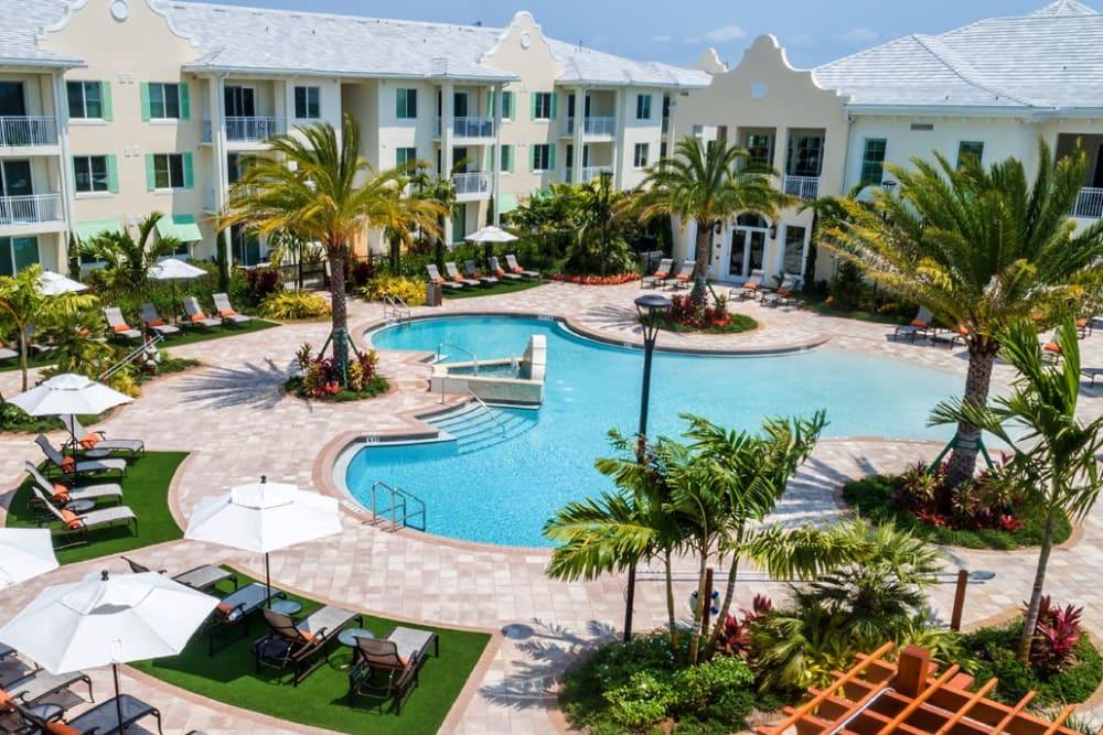 Aerial view of the resort-style zero edge swimming pool and lounge seating at Town Lantana in Lantana, Florida