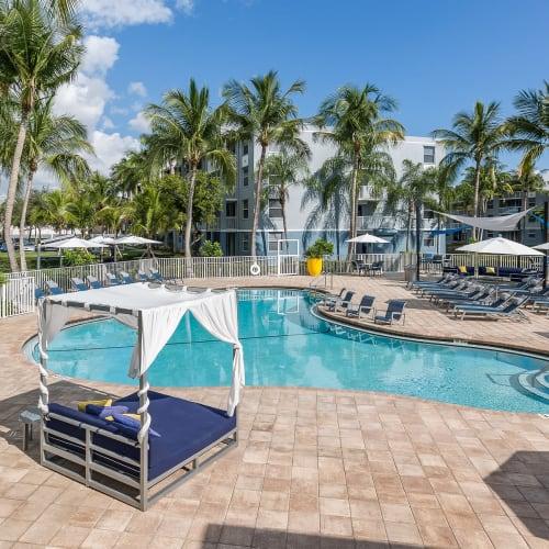 View virtual tour for our swimming pool at Beach Walk at Sheridan in Dania Beach, Florida