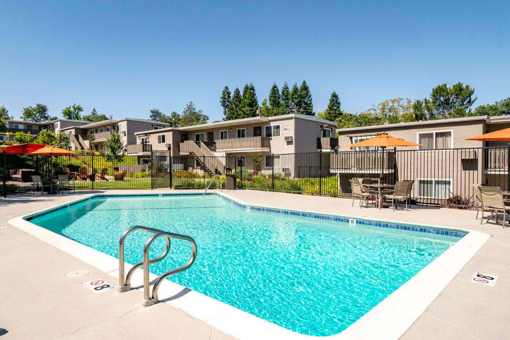 Gorgeous day at the swimming pool at Pleasanton Heights in Pleasanton, California