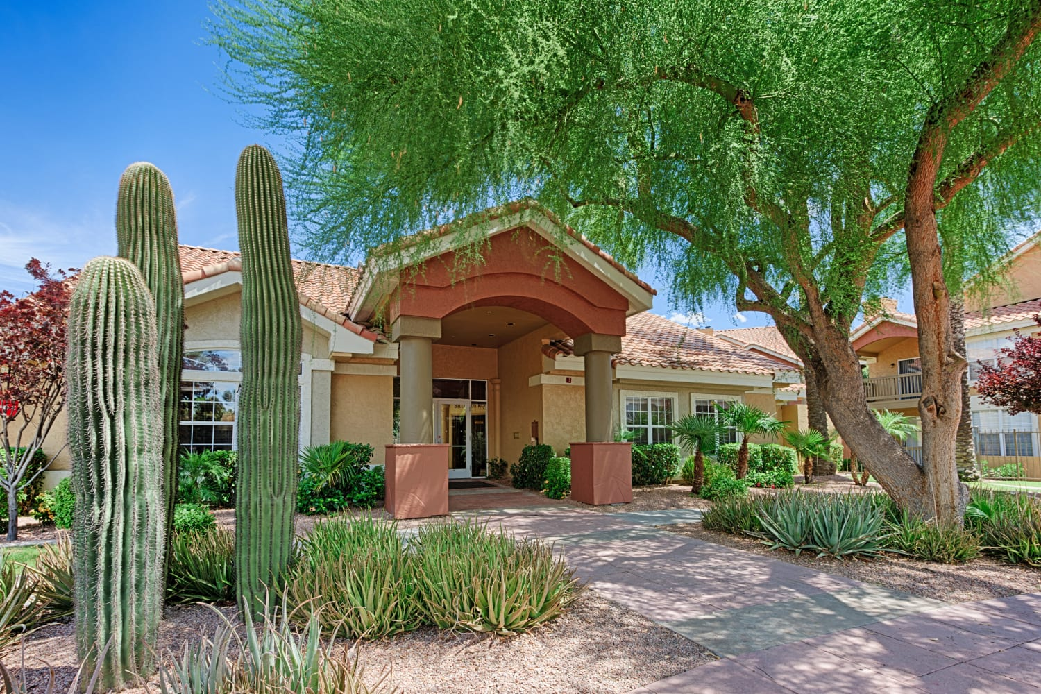 Sonoran Vista Apartments in Scottsdale, Arizona, offer lovely desert landscapes