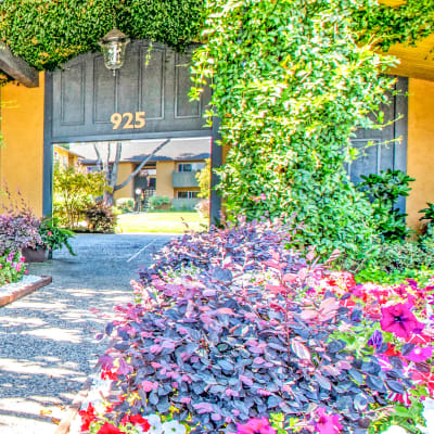 Well-maintained flora at the entrance to our community at The Landmark Apartment Homes in Sunnyvale, California
