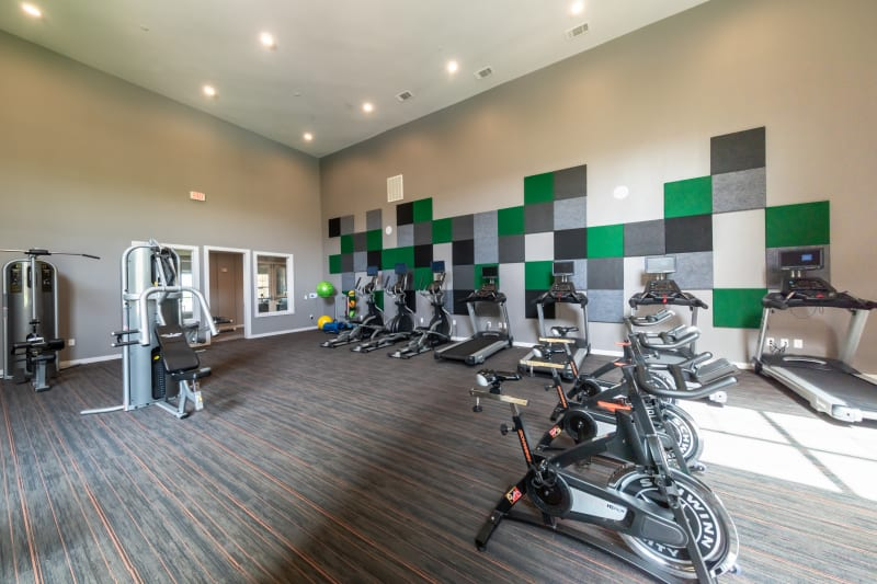 State of the Art Fitness Center at Haven at Liberty Hills in Houston, TX