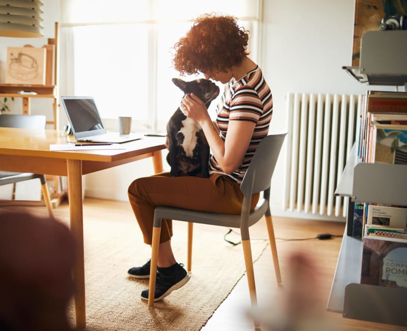 Resident and her pup getting some work done in their home office at 505 West Apartment Homes in Tempe, Arizona