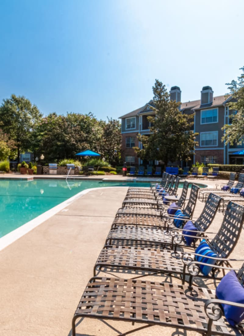 Lounge chairs lined up next to pool at Marquis of Carmel Valley in Charlotte, North Carolina