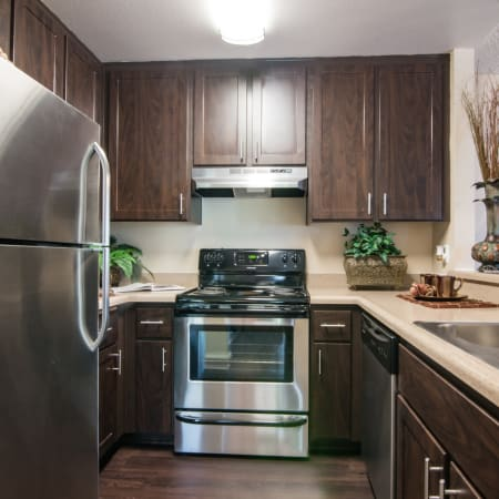 brown renovated Kitchen with stainless steel appliances at Lakeview Village Apartments in Spring Valley