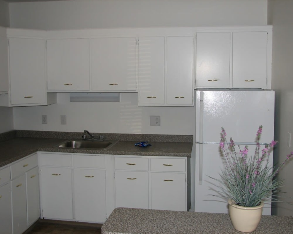 Modern kitchen at Springwood Gardens