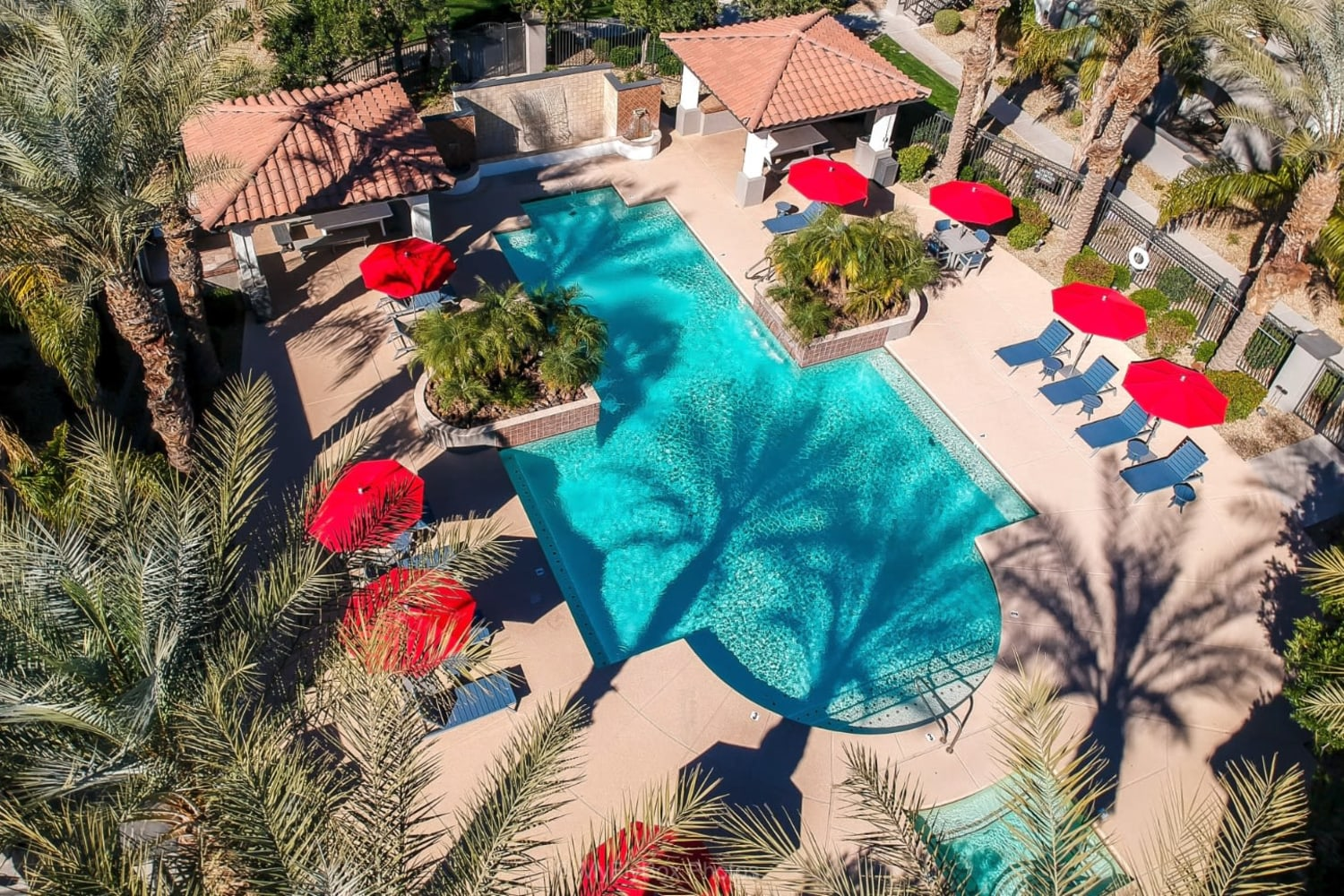 Dobson 2222 in Chandler, Arizona, offers a swimming pool with beach chairs and umbrellas