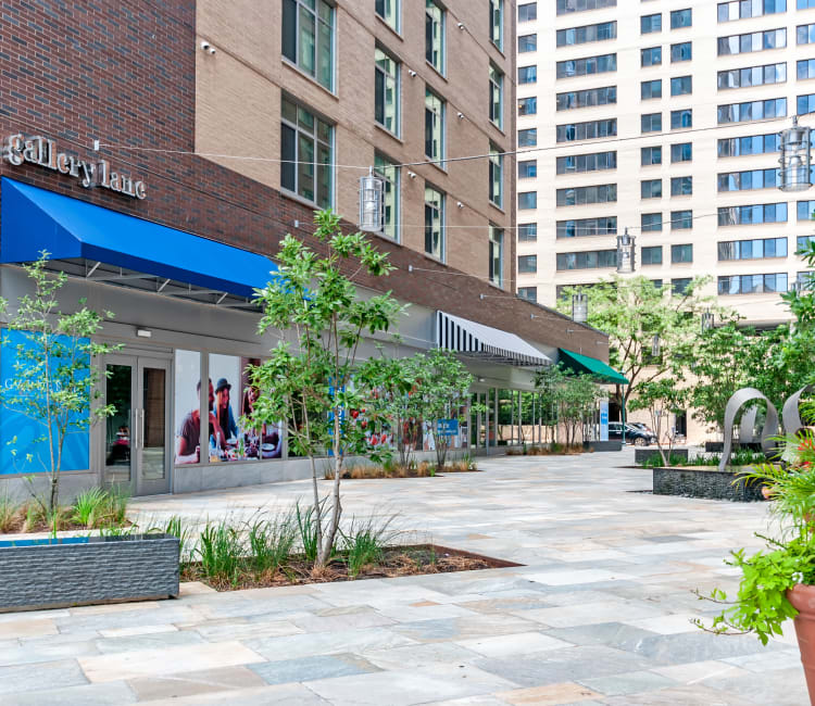 Gallery Lane with anchor restaurant at Gallery Bethesda II in Bethesda, MD