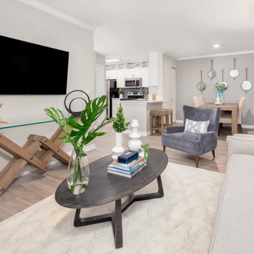 View virtual tour for 2 bedroom 2 bathroom unit at Amira at Westly in Tampa, Florida