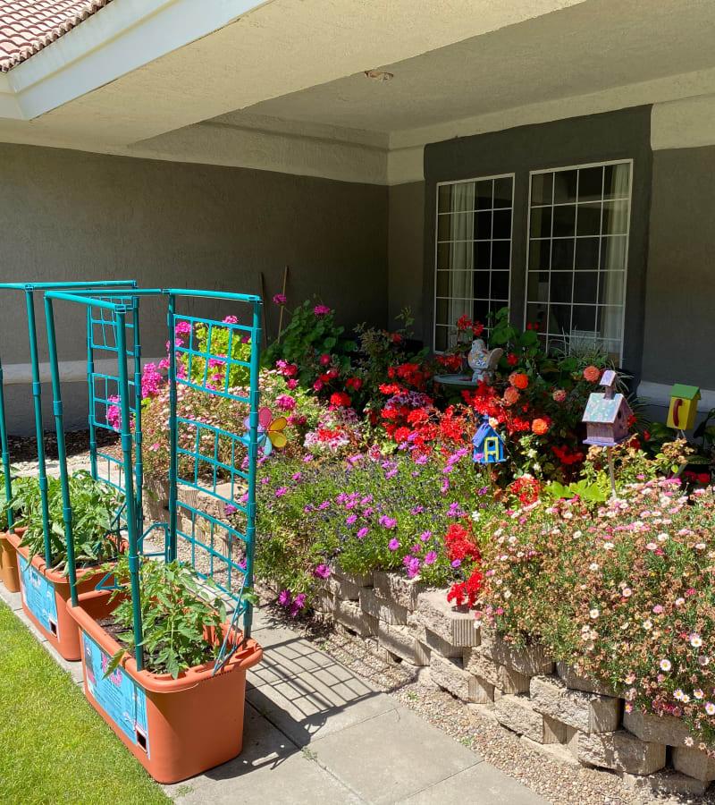 The courtyard at Pacifica Senior Living Fresno in Fresno, California