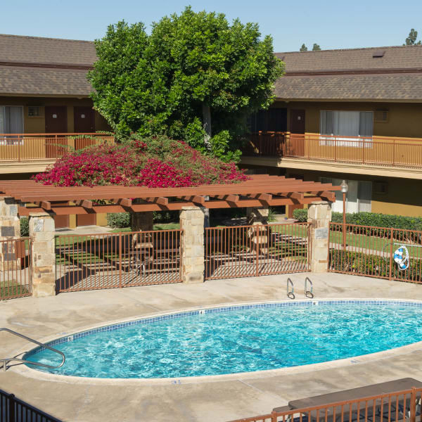 Pet friendly apartments in Tustin, California