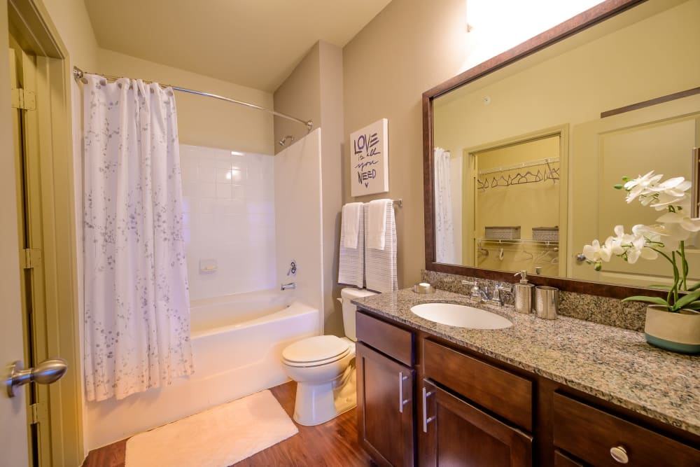 Main bathroom with large vanity mirror at Pecan Springs Apartments in San Antonio, Texas