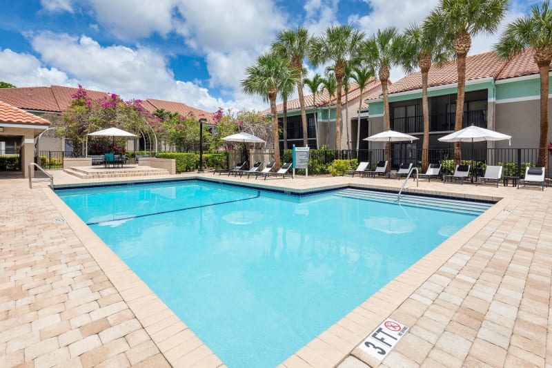 Resort-style swimming pool flanked by chaise lounge chairs and lush vegetation at The EnV in Hollywood, Florida