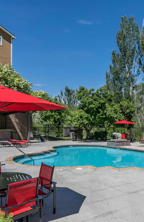 Poolside view and lounge area with umbrellas at The Crossings at Bear Creek Apartments in Lakewood