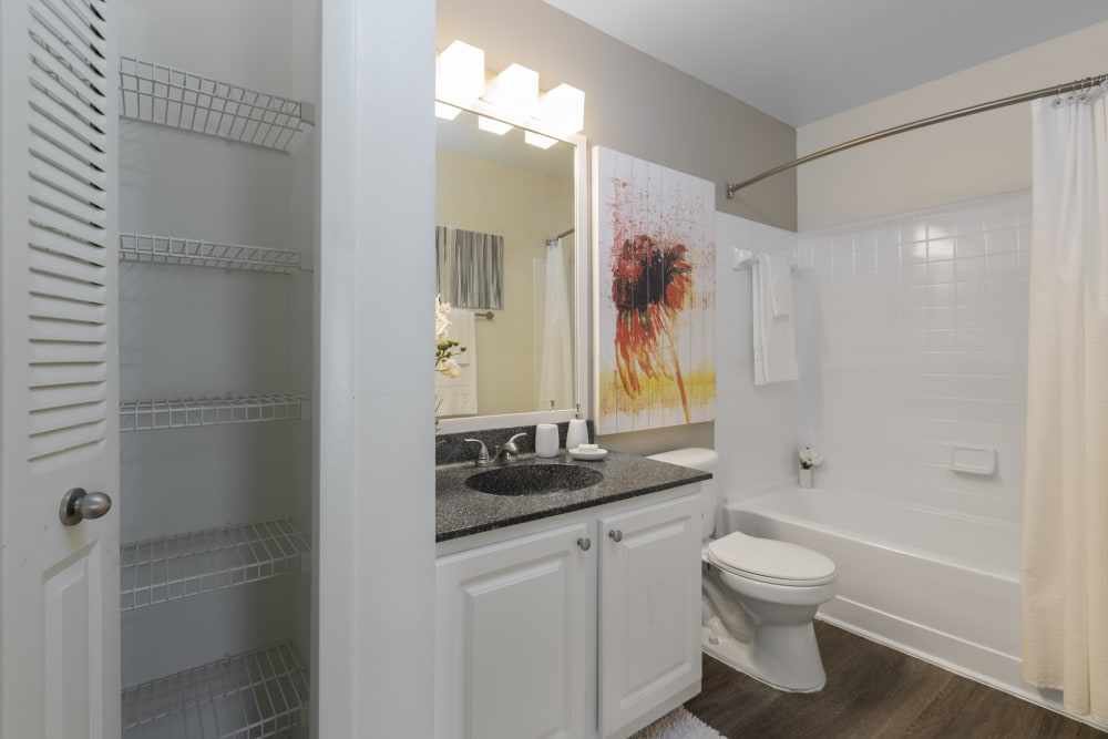Model bathroom with large vanity mirror and oval tub shower combo at The Vue at Baymeadows Apartment Homes in Jacksonville, Florida