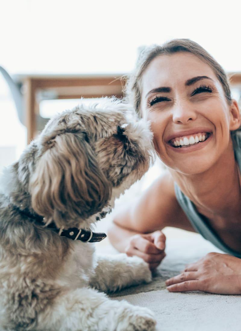 Pet fees at Marquis at Ladera Vista in Austin, Texas