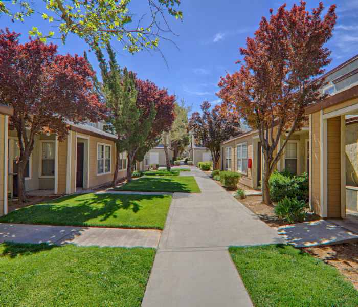 Beautifully maintained landscaping in sunny courtyard at Cordova Park Apartment Homes in Lancaster, CA