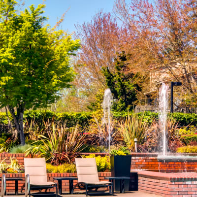 Chaise lounge chairs, fountains, and mature trees near the pool at Sofi at Murrayhill in Beaverton, Oregon