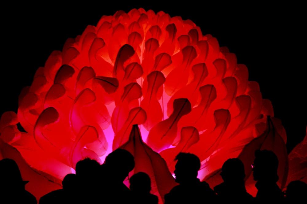 Red glowing art display at Telegraph Arts in Oakland, California