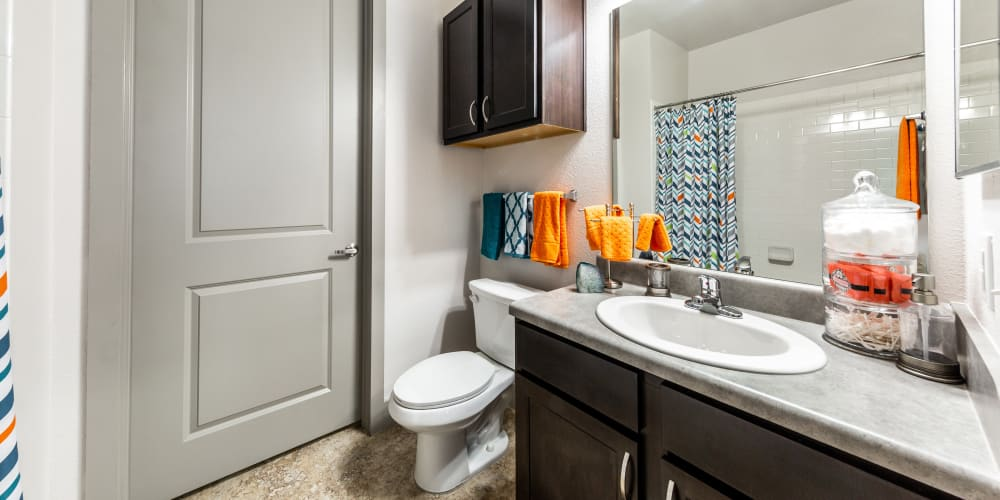 Bathroom at Regents West at 24th in Austin, Texas