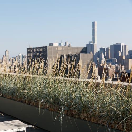 Views at The Larstrand in New York, New York