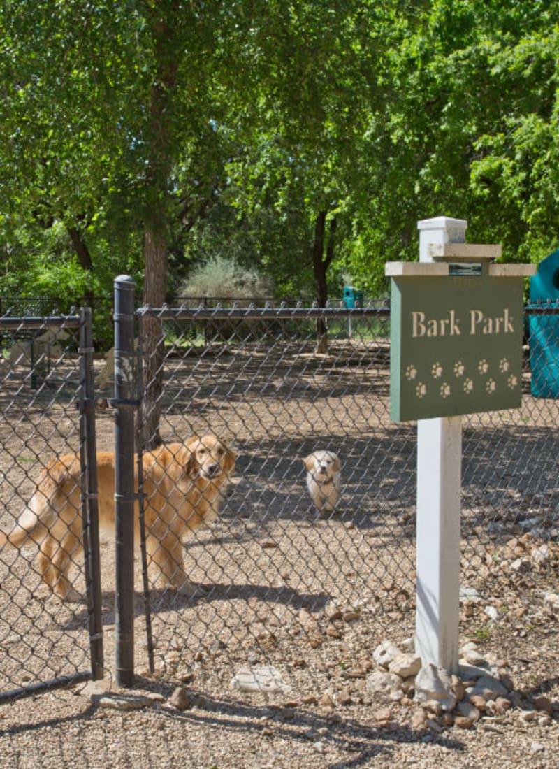 Pet fees at Marquis Bandera in San Antonio, Texas
